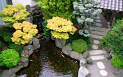 Ландшафтный дизайн, восточный стиль