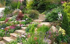 Ландшафтный дизайн двора.