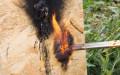 Испытание СИП панели на возгорание.